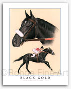 Black Gold horse art Kentucky Derby paintings for sale