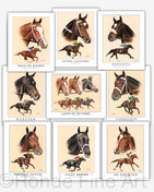 Famous thoroughbred racehorse fillies horse art paintings gift set