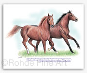 Ferdinand Exceller thoroughbred horse rescue adoption art painting by Rohde