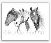 Vigilantes: wild horses BLM mustangs in graphite art by Rohde