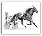 Standardbred trotting horse harness racing art prints