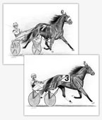 Standardbred horse harness racing art drawings
